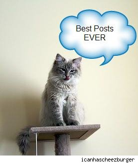 Cat standing on scatching post- Best