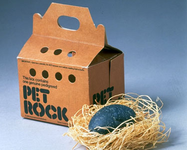 pet rock a fad -- facebook games, not