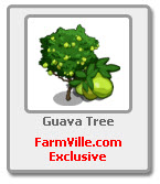 farmville guava tree