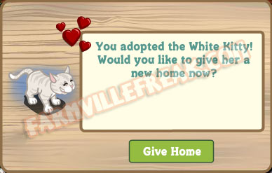 farmville adoptable white kitten notice
