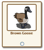 farmville brown goose giftables