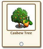 Farmville cashew tree