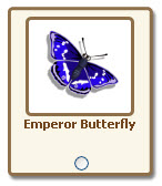 farmville emperor butterfly giftable