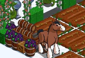 farmville freak farmgoddesss clydesdale