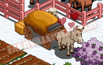 farmville freak farmgoddess's donkey