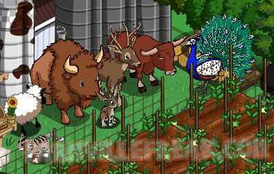 farmville freak jefferson's animal mystery box family