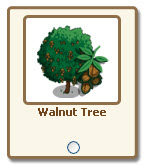 farmville walnut tree