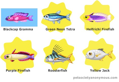 Purple Firefish in Pet Society