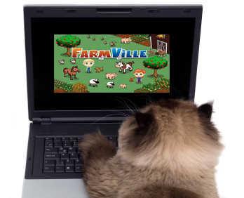 cats love playing farmville -- it's a fact!