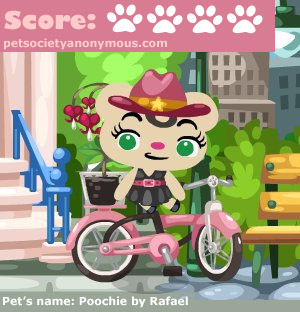 Pet Society Bicycle