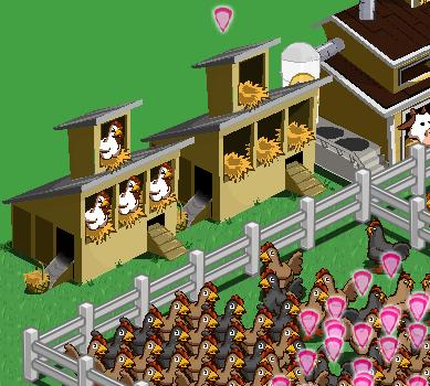 chicken coop glitch fix in FarmVille