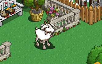 farmville mystery gift prizes saanens goat