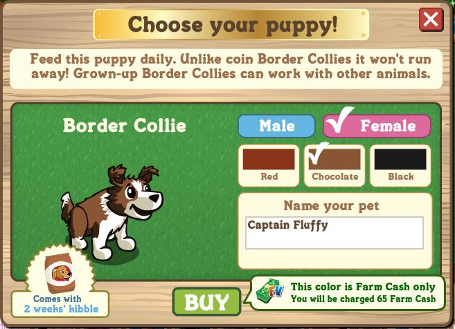 farmville border collie FV $