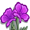 farmville purple poppy flower