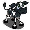 farmville holstein calf