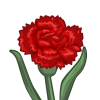 farmville red carnation