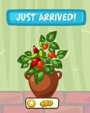 Pet Society Chili Pot for 450 Coins
