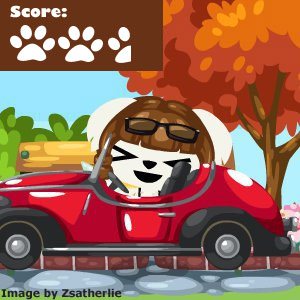 Pet Society Cars Review