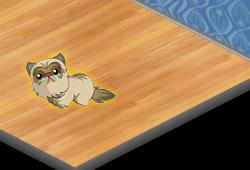 yoville persian cat