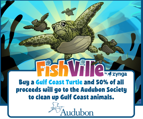 FishVille Audubon Society Gulf Coast Turtle