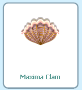 FishVille Maxima Clam