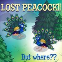 treasure isle lost peacocks