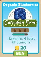 FarmVille Organic Blueberries Cascadian Farm