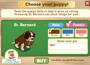 FarmVille St. Bernard Choose your puppy!