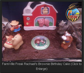 FarmVille Freak Rachael's Brownie Cake