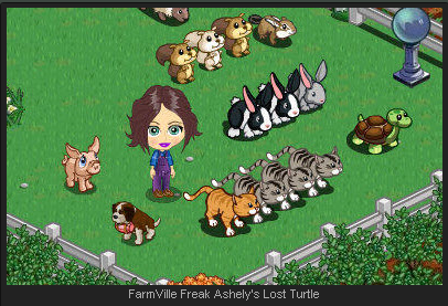 FarmVille Freak Ashely's Lost Turtle