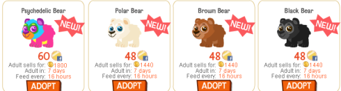 Happy Pets bears in store