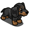farmville black dachshund