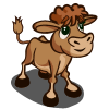 farmville gelbvieh calf