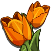farmville orange tulip
