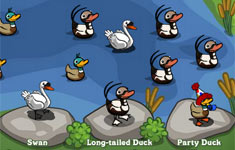 farmville cheats duck pond