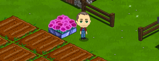 FarmVille Electric Rose Bed