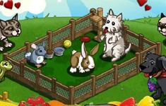 farmville cheats pet run guide