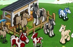 farmville cheats horse paddockgoals