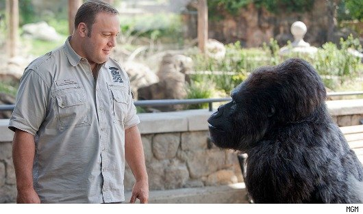 First Trailer for Kevin James in 'Zookeeper' (VIDEO) | Moviefone