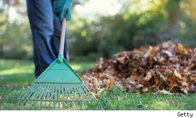autumn gardening tips