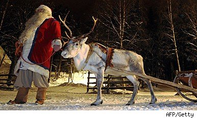 hire reindeer for christmas parties