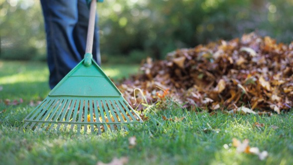 Autumn garden jobs
