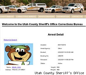 Yogi Bear Arrested
