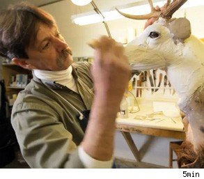 Jim Brown taxidermist