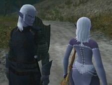 Dark elf pair