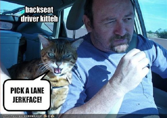The Guild Counsel  Dealing with the Backseat Driver