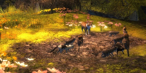 Flameseeker Chronicles Simple pleasures in Guild Wars 2