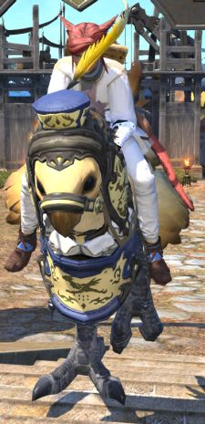 It's super easy to get distracted by the fact that chocobo porters have an adorable hat, I know.