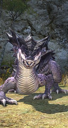 Ishgard shouldn't get to have all the dragon problems, dude.