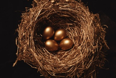 Nest with golden eggs in it
